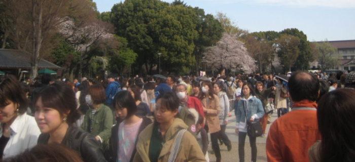 上野動物園入園待ち