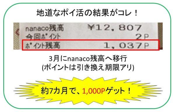 ポイ活nanaco